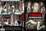 http://porngaymag.com/video/TWIN20121114135014/v_image03.jpg